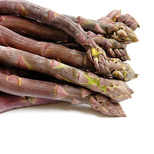 (Purple Passion 10 Live Asparagus Bare Root Plants -2yr-Crowns)