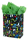Hallmark Large Birthday Gift Bag with Tissue Paper (Black Letters)