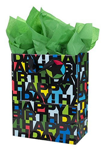 Hallmark Large Gift Bag with Tissue Paper for Birthdays (Happy Birthday in Black Letters) -