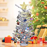 KEYNICE Tabletop Mini Christmas Tree Artificial Home Decor with 22 Pcs Christmas Decoration Ornaments Glittering Christmas Trees Set for DIY Room Party Xmas Decoration (Silver)