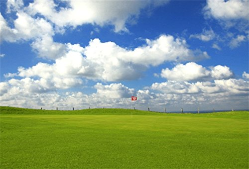(AOFOTO 8x6ft Golf Course Flagpole Background Grassland Landscape Hole Player Relax Photography Backdrop Leisure Blue Sky Walk Ball Fairway Game Photo Studio Props Man Adult Portrait Vinyl)