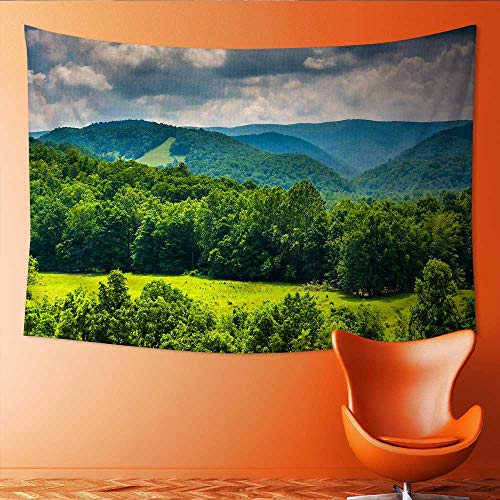 Printsonne Horizontal Version Tapestry View of Mountains in The Potomac Highlands of West Virginia Throw, Bed, Tapestry, or Yoga Blanket 72W x 54L Inch