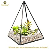 Pyramid Tabletop Terrarium - For Home and Office Decor - Creates a Balanced and Harmonious Environment - Durable Sodium Calcium Glass - Sturdy Brass Frame and Various DIY Projects
