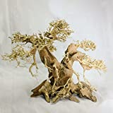 Aquarium Driftwood Bonsai Tree ABB Decoration for Terrarium Tropical Fish