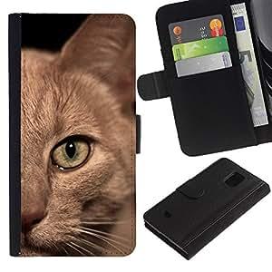 Burmese American Shorthair British Cat - la tarjeta de Crédito Slots PU Funda de cuero Monedero caso cubierta de piel Samsung Galaxy S5 Mini, SM-G800