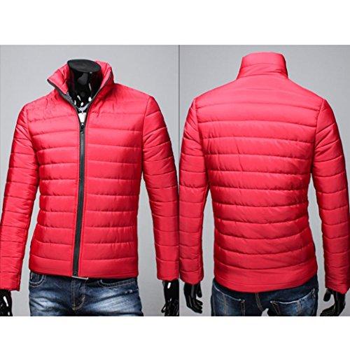 Stand Chaqueta Cremallera Gruesa Hombres Invierno Caliente SHOBDW algodón de Rojo Abrigo qET8Oax