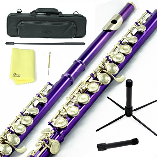 Sky C Flute with Lightweight Case, Cleaning Rod, Cloth, Joint Grease and Screw Driver -  Purple/Gold Closed Hole
