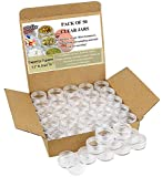 5 gram plastic jars - Estilo Clear Plastic Jars, Cosmetic Containers with Lids 5 Gram - 50 Count