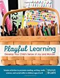 Playful Learning: Develop Your Child's Sense of Joy and Wonder.