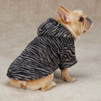 Casual Canine Animal Print Cuddler, Small/Medium, Zebra