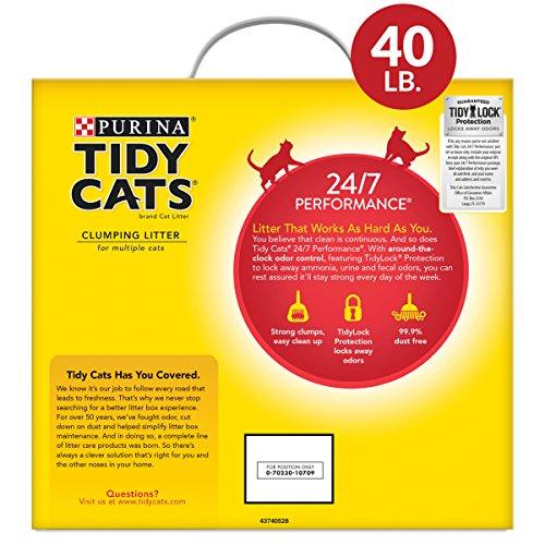 Buy clumping kitty litter