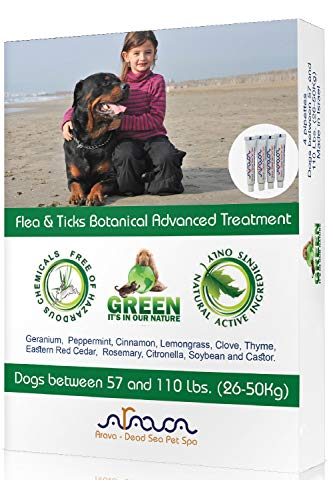 Arava Natural Flea & Tick Prevention for Dogs & Cats - 4-Doses - 100% Safe Flea & Tick Control - Repels Pests with Natural Oils - Safe on Skin and Coats - Enhanced Defense & Prevention (4 Variations) (Natural Flea Treatments For Dogs Most Effective)