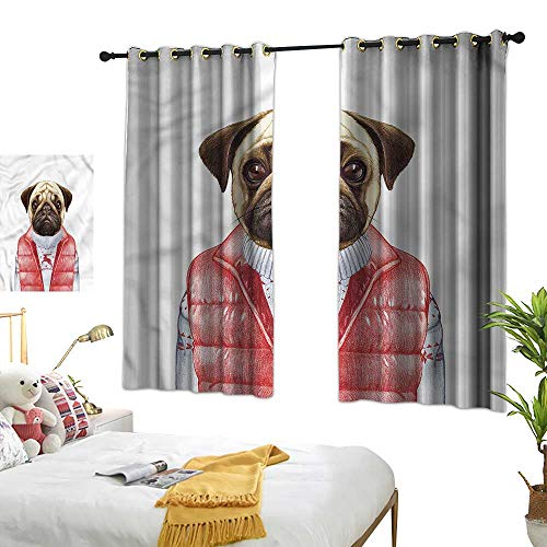 Lightly Backdrop Curtain Pug,Red Vest Christmas Sweater 72