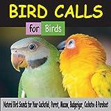 Bird Calls for Birds: Natural Bird Sounds for Your Cockatiel, Parrot, Macaw, Budgerigar, Cockatoo & Parakeet