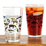 CafePress - Costa Rica Animals - Pint Glass, 16 oz. Drinking Glass