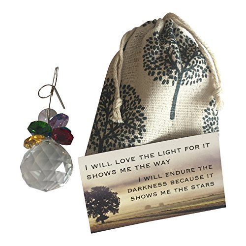 (Harper Olivia Thinking of You~Glass Sun Catcher with Gift Bag and Magnet Rainbow Angel Wings)
