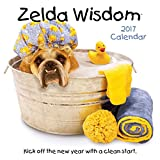 Zelda Wisdom 2017 Wall Calendar, 12