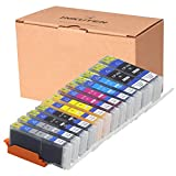 INKUTEN (TM) Compatible Ink Cartridge Replacement for Canon PGI-250XL CLI-251XL High Yield (2 large Black, 2 Cyan, 2 Magenta, 2 Yellow, 2 Small Black,2 Grey) - 12 Pack