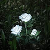 XLUX Outdoor Decorative Solar Rose LED Lights, White