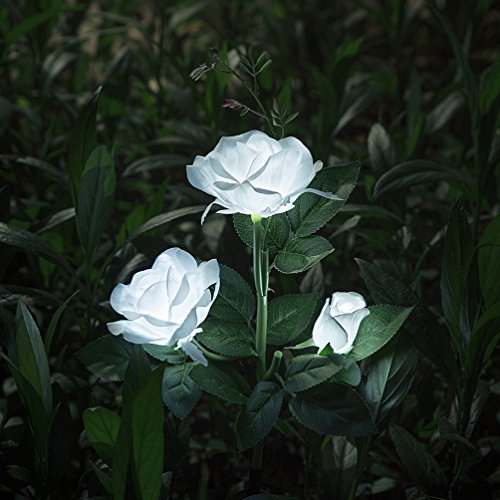 (XLUX Outdoor Solar Powered Rose Lights Flower Stake, for Garden Patio Yard Christmas Pathway Decoration, White)