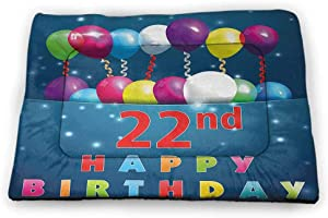 Small Dog Food Mat 22nd Birthday Machine Washable Pet Bed Liner Party Birth with Colorful Balloons Wishes and Joyful Occasion Image Print 18