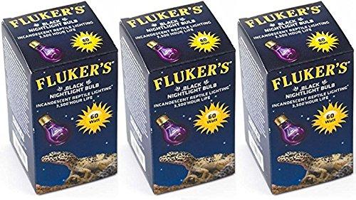 (3 Pack) Fluker's Black Nightlight Bulbs for Reptiles 60 watt