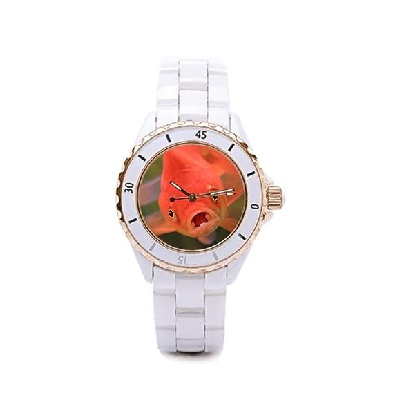 Queensland correa de cerámica relojes sabio el reloj tienda Parrot Fish: Amazon.es: Relojes