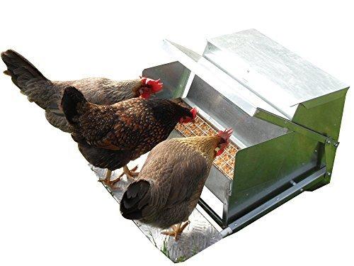 Grandpa's Feeders Automatic Chicken Feeder - Standard (20lb Feed Capacity)