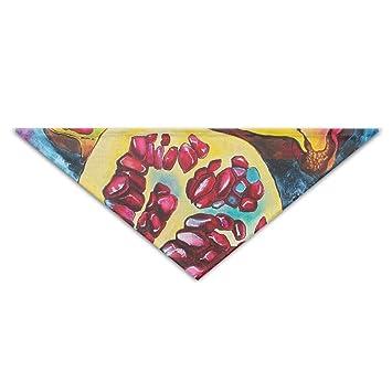 114473357b38 Rghkjlp Pintura al óleo de Granada Pintura de Granada Turbante Turbante  Bufanda del triángulo Pañuelo de Babero Accesorios Bufanda para Mascotas:  Amazon.es: ...