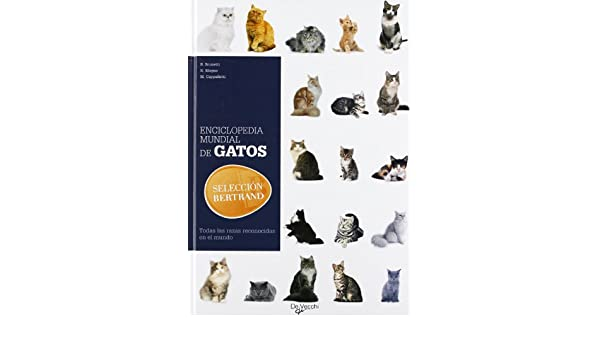 Enciclopedia mundial de gatos (Spanish Edition): B.Brunetti, N.Magno, M.Cappelletti: 9788431541200: Amazon.com: Books