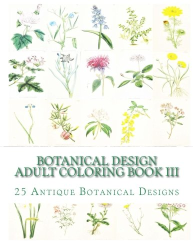 Botanical Design Adult Coloring Book Iii 50 Antique Designs On Individual Single Sided Pages Epub