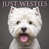 Just Westies 2020 Wall Calendar (Dog Breed Calendar)