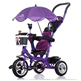 Trikes Kids Baby Carriage Children's Tricycle Bicycle 1-6 Years Old Large Baby Girls Car 3-wheeler (Color : Purple)