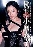 挑発 小向美奈子 [DVD]