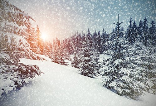 AOFOTO 8x6ft Snowfield Backdrop Snowflake Photo Shoot Background Winter Forest White Christmas Trees Photography Studio Props Adult Artistic Portrait Natural Scenic Digital Video Drop Vinyl Wallpaper by AOFOTO