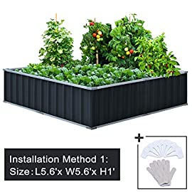 "KING BIRD 67.2""x 67.2""x 11.8"" 4 Installation Methods for DIY Raised Garden Bed Galvanized Steel Metal Planter Kit Box Grey W/ 8pcs T-Types Tag & 2 Pairs of Gloves (Charcoal-Grey) 12 【Extra-thick 2-Ply Reinforcement】 Double card frames on the two sides of sheet make the garden bed more durably and stably; never worry about its distorted or collapsed and it presents much more beautiful design; 【Advanced Installation Design】 Patent of this new installation design gives you a superbly convenient installation procedure; you just need piece together the card frame and sheet; a firm garden bed will present to you; 【Multilayer Galvanized Paint】 Upgraded multilayer galvanized paint efficiently prevents rust and continues to beauty; also never worry about that pest and rain damage the wood garden bed; galvanized steel garden bed provides a lasting use and no discoloration;"