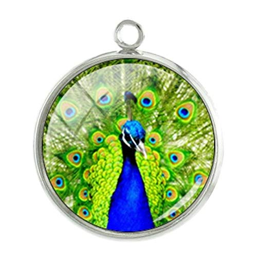 Pendants -1Pc Birds Seris Pictures Pendants Charms Personalized Photos Handmade 20mm Glass cabochon Dome Classic Jewelry -07