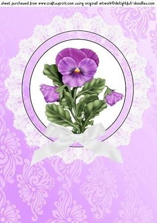Sharon Poore - Decoración para sartenes (1 unidad), color lila: Amazon.es: Hogar