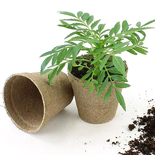Jiffy 3'' Round Peat Pots - OMRI LIsted Organic - 1400ct Case by Jiffy