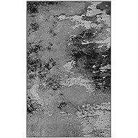 Brumlow Mills EW10149-30x46 Aiken in Gray Contemporary Rustic Area Rug, 26 x 310
