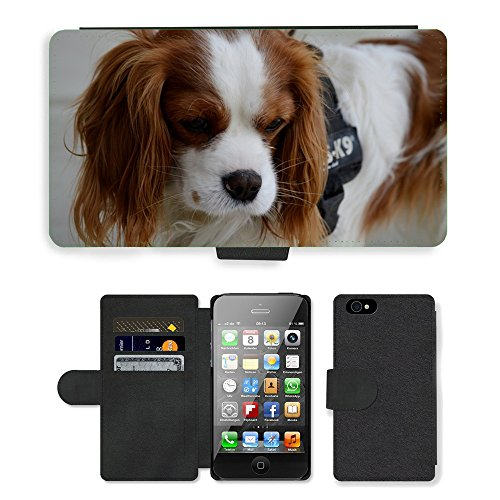 Just Phone Cases PU Leather Flip Custodia Protettiva Case Cover per // M00127675 Chien hybride drôle animaux à fourrure // Apple iPhone 4 4S 4G