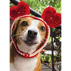 dog with heart cap avanti stand out pop up funny valentines day card - Dog Valentines Day Cards
