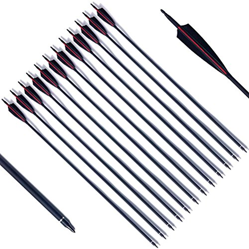 """PG1ARCHERY Archery Hunting Carbon Arrows, 30 inch Target Arrow 5"""" Turkey Feathers Fletched with Removable Field Points Tips for Practice (Pack of 12) Red Black"""