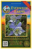 Everwilde Farms - 800 Blue Rocky Mountain Columbine Native Wildflower Seeds - Gold Vault Jumbo Seed Packet