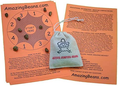 [해외]Sack of 100+ Live Mexican Jumping Beans. Includes Educational Game Sheets. / Sack of 100+ Live Mexican Jumping Beans. Includes Educational Game Sheets.