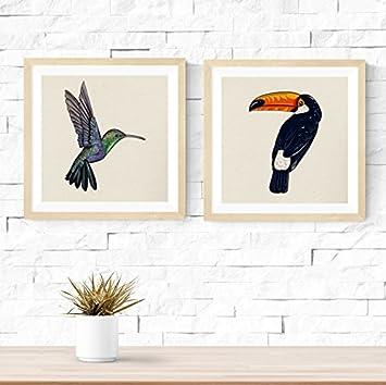 Nacnic Pack de láminas para enmarcar ¿ES UN PÁJARO?. Posters Cuadrados con imágenes de pájaros. Decoración de hogar. Láminas para enmarcar. Papel 250 Gramos
