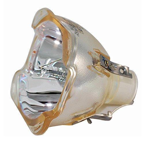 Lâmpada para Projetor Philips 9281 392 05390 Philips Bulbo