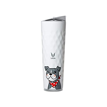 Buy Vaya Drynk 600 ml Thermosteel Vacuum Insulated Flask, Sipper Water  Bottle (Tumbler+Sipper), Pal Online at Low Prices in India - Amazon.in
