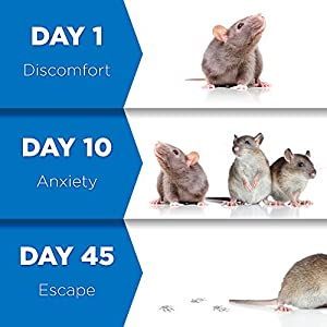4TopTime Ultrasonic Pest Repeller – Indoor Pest Control Devices with Ultrasonic & Electromagnetic Power – Fight against Rats, Mice, Ants, Roaches, Mosquitoes, Insects & More – Set of 4