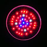 Ledwholesalers 90 Watt High Power Full Spectrum LED Grow Light Quad Band Red Blue Orange White,2520RGBW Review